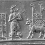 tell_billa_boat_cylinder_seal